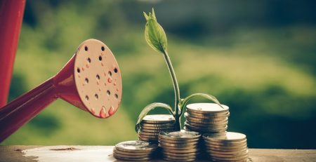 startup yatırımcı