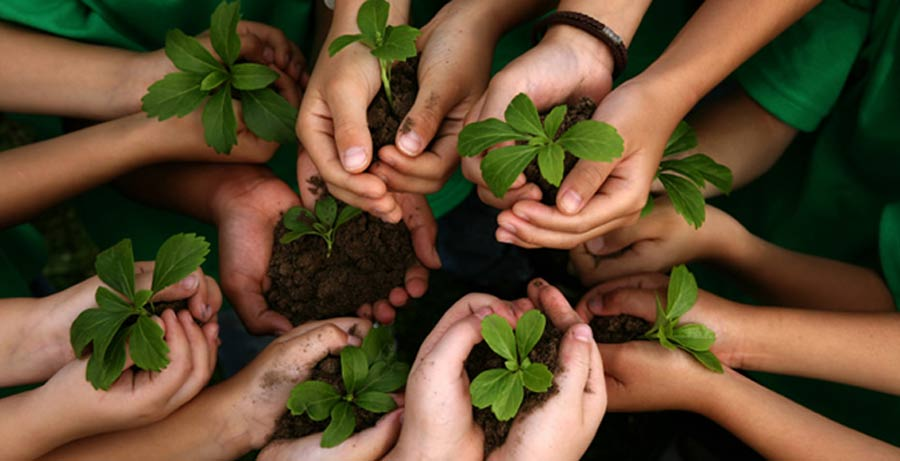 Sosyal Sorumluluk Projeleri Gençlere Neler Kazandırır?